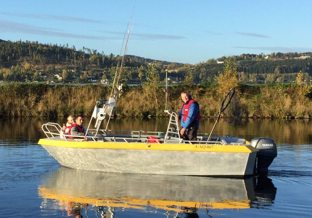 IMG_0007_alujolle gul fiske1