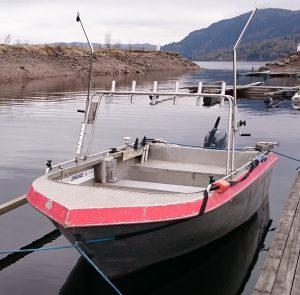 DSC_0001_alujolle rød fiske